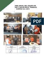 PROGRAMA ANUAL 2013 (1).pdf