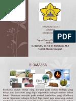 biomassa-130707135756-phpapp01