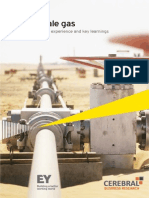 Shale Gas - Global Experience + Issues