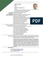 Currículum Vítae Roberto López del Campo