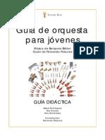 Guía de Orquesta Para Jóvenes_Fernando Palacios