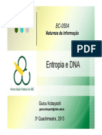 10+DNA+e+Informacao+Parte+2+2013-3