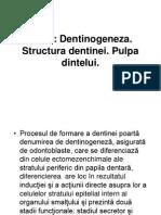 dentinapulpaDAA2014.ppt
