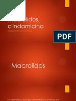 Macrolidos, clindamicina
