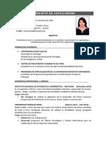 Cv _ Norka Del Castillo Medina