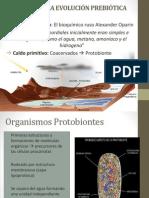 evolucion prebiotica2