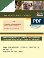 Demodicose Canina