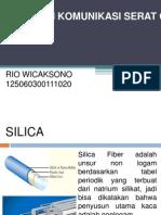 125060300111020_Rio Wicaksono
