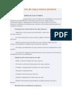 Control interno de caja y banco.docx