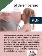 73796119 Control de Embarazo