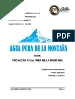 Proyecto final Agua Pura de la Montaña.pdf
