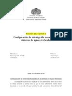 Configuración de estratigrafía secuencial en sistemas de aguas profundas
