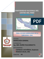 INFORME SUBCUENCA PALCA.docx