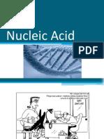 BCM 150 Nucleic Acid