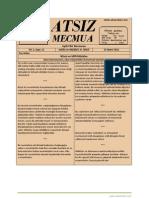 Atsız Mecmua - Sayı 11