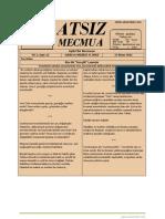 Atsız Mecmua - Sayı 12