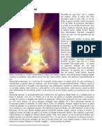229005597-Structura-corpului.pdf