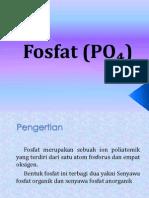 Fosfat (PO₄)