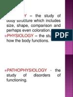 Anatomy Powerpoint