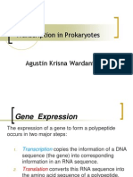 Transcription in Prokaryotes-AKW