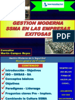 00 Gestion Moderna Ssma - Team
