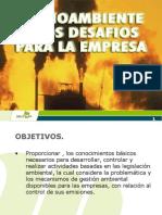 Medio Ambiente y Desafíos Para La Empresa 2010