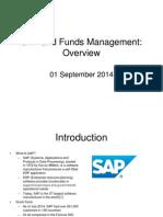 SAP and FM