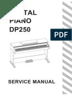 DP250 Service Manual G01 140425