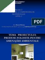 Prezentarea Proiectului de Certificarea Competentelor Profesionale