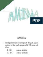 4.AMINA kimia organik