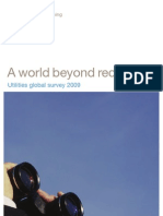 Utilities Global Survey 2009