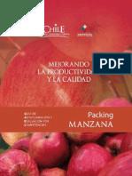Packing Manzana