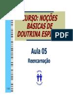 05-Reencarnacao