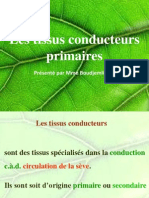Cours_4-_Les_tissus_conducteurs_primaires__1_.pdf