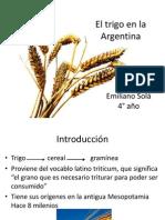 El Trigo en La Argentina