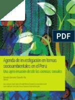 Agenda de investigación en temas socioambientales en el Perú