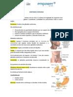 Aula Nº 3 - Anatomia e Fisiologia