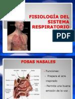 FISIOLOGIA SISTEMA RESPIATORIO.ppt