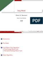 Ising Model Monte Carlo Methods