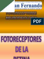 NEUROFISIOLOGIA DE LOS FOTORRECEPTORES
