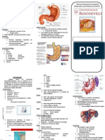 TripTico de anatomia del estomago
