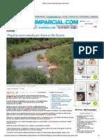 16-11-14 Preparan nuevo estudio por daños en Río Sonora
