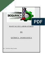 Manual de química inorgánica.