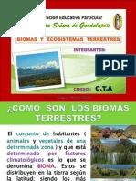 biomas ecosistemas terrestres