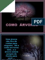 Como Árvores