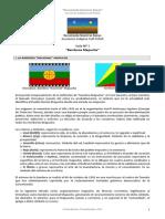 Los Origens Araucanos Bandera Mapuche