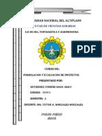 FORMULACION Y EVALUACION DE PROYECTOS ( muestreo).docx