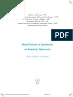 Redes Publicas Cooperacao Ambientes Federativos GP Versao Grafica