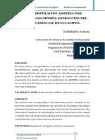 EUCALIPTO Hidrodestilacion de Aceite Escencial
