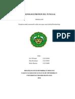 MAKALAH PST.docx